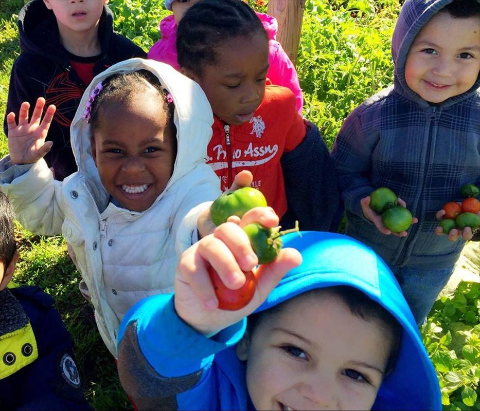 Stem School Ypsilanti: Program Focus: Growing Hope Promotes Access To Fresh